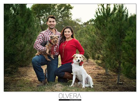 couples portraits at christmas tree farm olvera