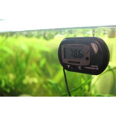 Termometer Digital Untuk Aquarium pin digital aquarium screensaver shows the of underwater world on