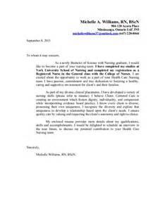 mchelle nursing resume update rn clean copy