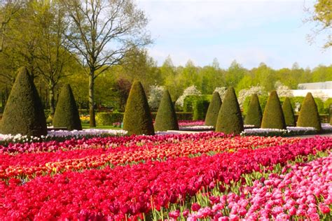 Keukenhof Gardens by Vaidosa Traveltips A Sea Of Flowers In The