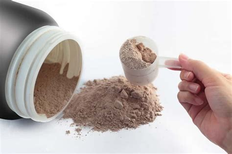 protein uses protein powder supplements info uses side effects