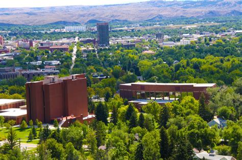 montana state pictures 50 most affordable schools for sports management
