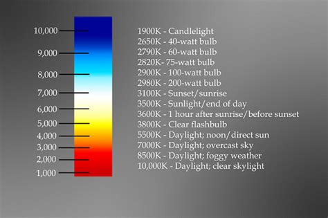 color temperature led what is why color temperature led lights a guide to