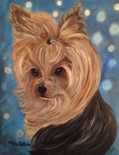 all white yorkie 1573 best images about all about yorkies on terrier pet