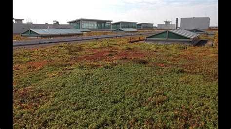 living roof dearborn images thief returns station clock thanks ford for