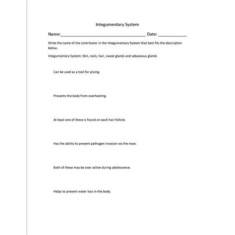 Integumentary System Worksheet by Integumentary System Worksheet Worksheets For School