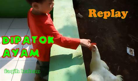 New Mainan Anak Ayam Patok Patok muhammad faqih kaizan juli 2016