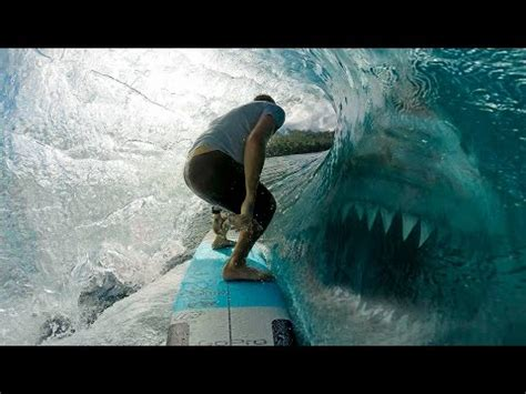 megalodon shark caught on tape, giant skeletons, alien