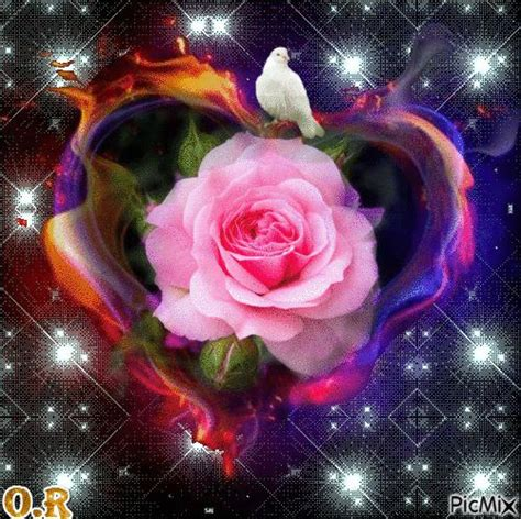 imagenes jonathan flores pin de jonathan flores en jonas pinterest gifs