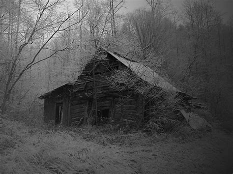 Creepy Cabin In The Woods by Abandoned Cabin In The Woods Coolness Of Stuff