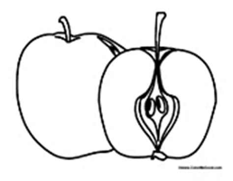 apple half coloring page fruit coloring pages