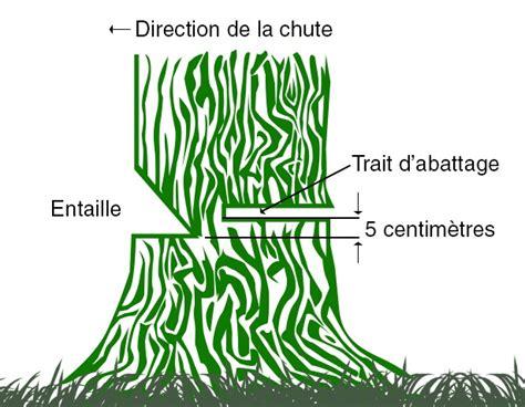 guide pour l abattage au qu 233 bec comment abattre un arbre