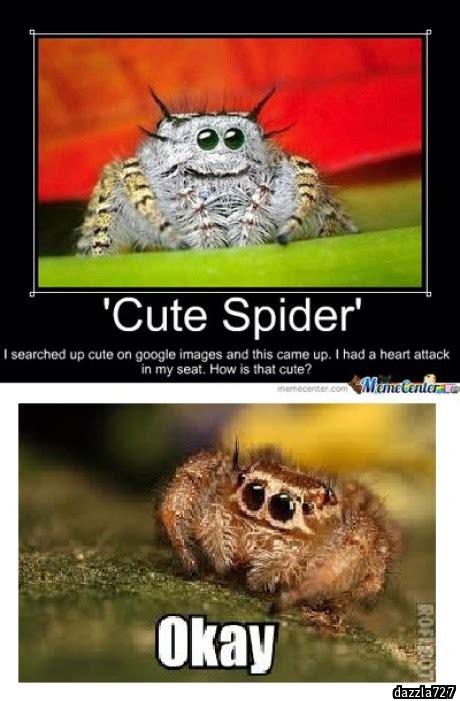 Misunderstood Spider Meme - misunderstood spider meme car