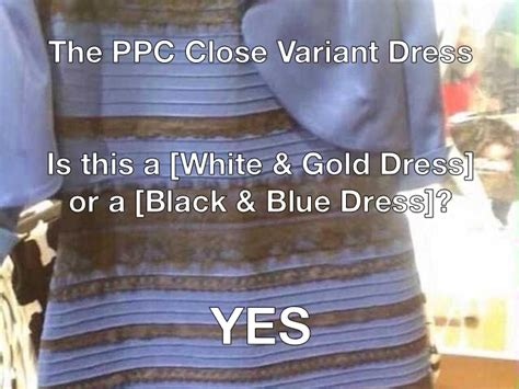 Meme Dress - ppc white and gold dress meme