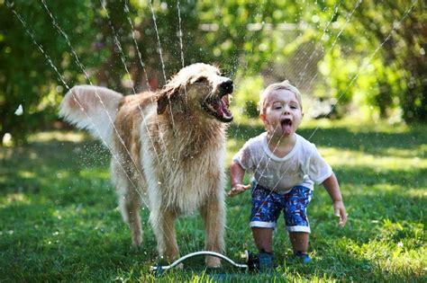 imagenes de niños jugando con animales las 5 mejores mascotas para ni 241 os