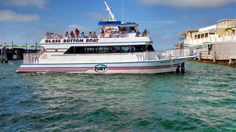 glass bottom boat key west reviews glass bottom catamaran picture of fury water adventures