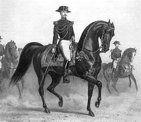 History Of The L by Dressage Through The Masters Lusitano Finder