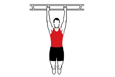 best pull ups five awesome pull up options