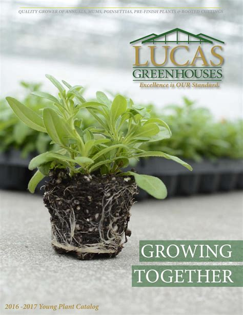 Garden Plants Catalogs by 2016 2017 Plant Catalog By Lucas Greenhouses Issuu