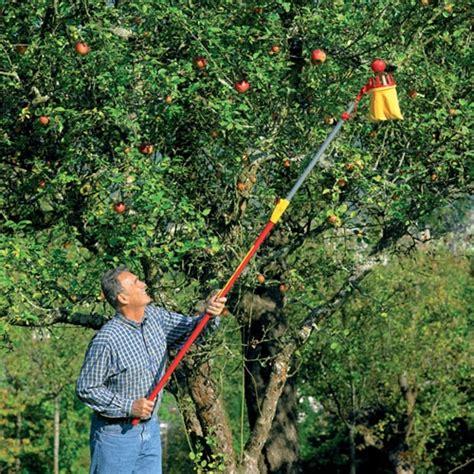 fruit tree picker multi change 174 adjustable fruit picker