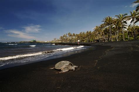 punalu u punalu u black sand beach travel places i ve traveled