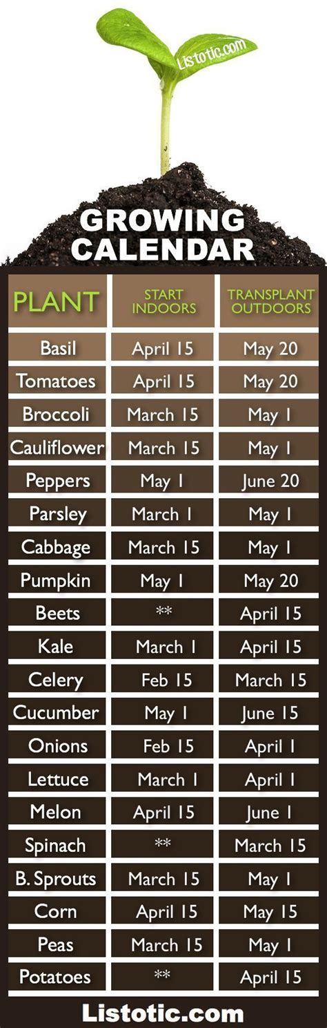 1000 Ideas About When To Plant Vegetables On Pinterest Vegetable Gardening Calendar