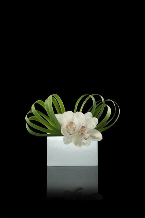 armani fiori ypha leaves and white cymbidium orchid on white laquer