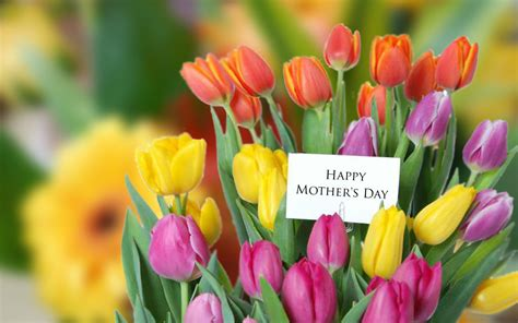 Flowers For Mothers Day by Mothers Day Flowers Background Free Large Images