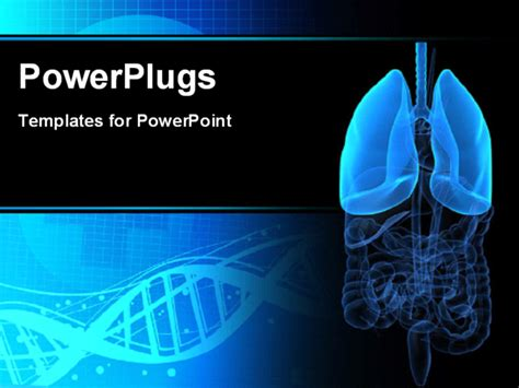 powerpoint themes lungs powerpoint template medical background with anatomy