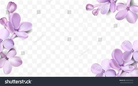 Anting Flower Petals Violet Soft Purple soft pastel color floral 3d illustration stock vector