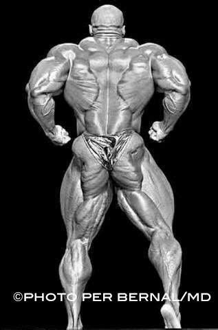 ronnie coleman s christmas tree bodybuilding pinterest
