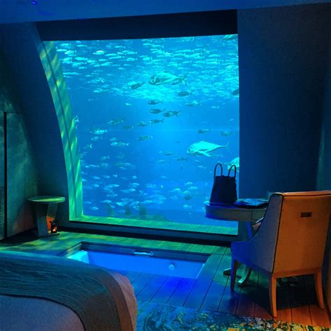 hotel room with aquarium wall sleeping in an aquarium at the equarius hotel singapore world of wanderlust