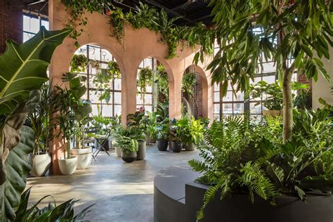 greenery nyc opens biophilic design store  greenpoint