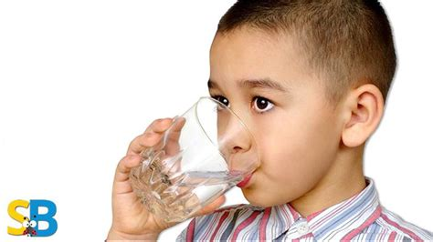 wont eat but drinks water 5 healthy habits that will actually change your smugg bugg