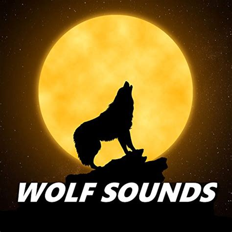 howling wolf sounds  wolf sounds  amazon