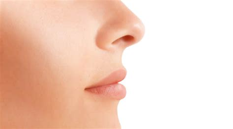 Nose Up Pemancung Hidung Look At Trade nose rhinoplasty surgery informational nose surgery