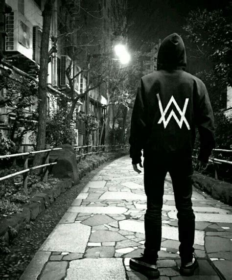 Hoodie Alan Walker 02 V263 158 best alan walker images on alan walker dj