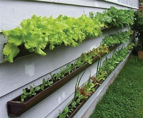 window box garden vegetables organize storage and save time with these simple ideas
