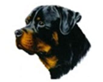 rottweiler items unique rottweiler portrait related items etsy