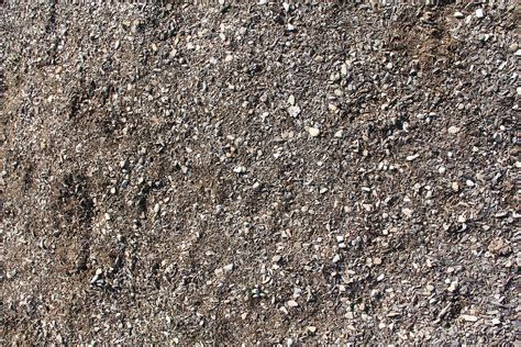 As Ground by Ground Texture Chipped Wood Bark Rock Path Graphic Design
