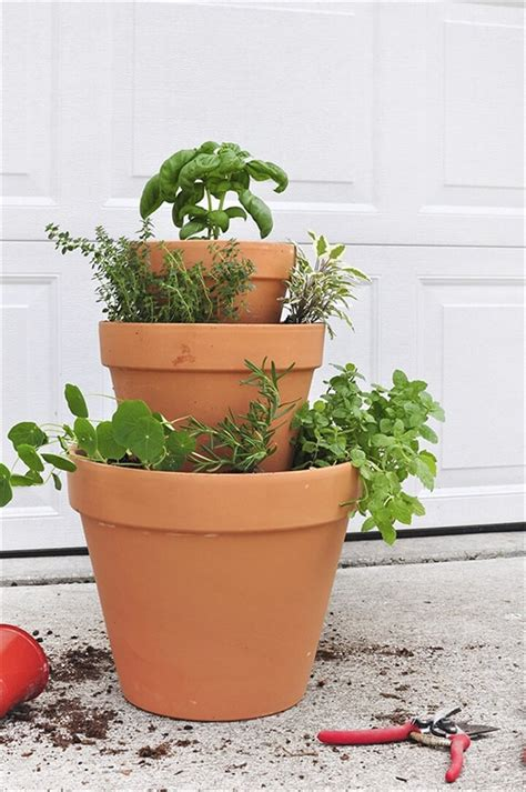 diy herb garden herb gardens to practice your green thumb with diy to make