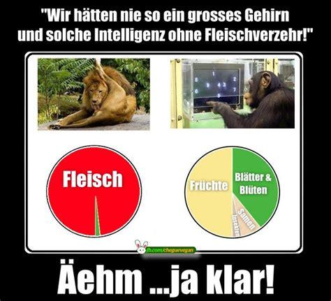Meme Deutsch - 1000 bilder zu deutsche vegane memes auf pinterest