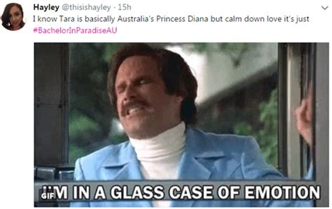 Glass Case Of Emotion Meme - hilarious bachelor in paradise memes emerge daily mail