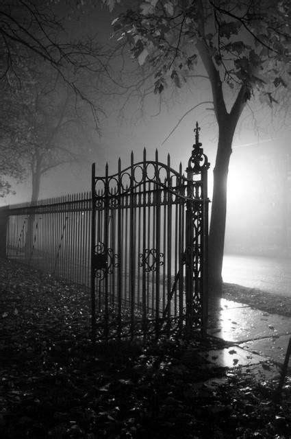 Midnight Dreams ☽ dreamy & dramatic black and white