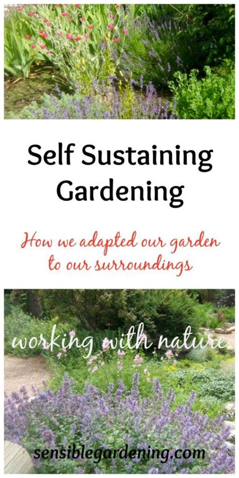 self sustaining garden 1000 images about gardening ideas on pinterest