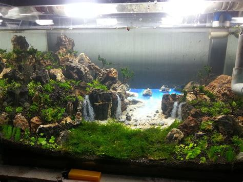 k design aquarium tropical beach with beautiful waterfalls aquascaping