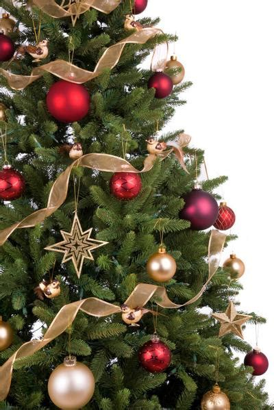 corporate christmas tree delivery london and across the uk