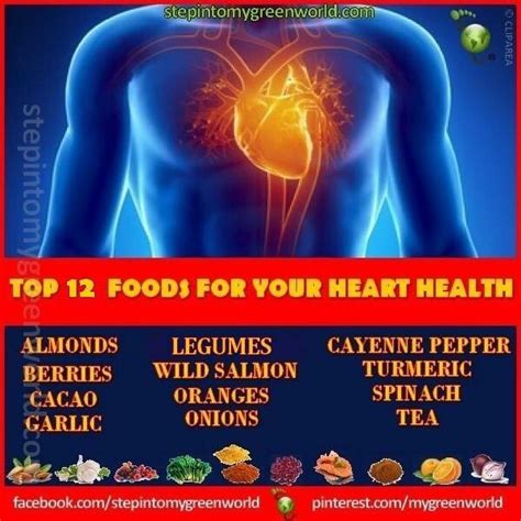 92 best images about healthy 92 best high blood pressure heart health images on cardiovascular disease beleza