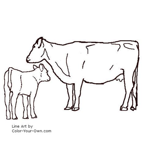 coloring pages of cow and calf free coloring pages of angus bull