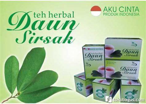 khasiat daun sirsak  kecantikan teh kulit manggis